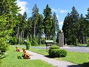 Mittelgebirge Thueringer Wald