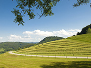 Mittelgebirge Rhoen